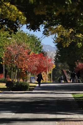 11/19/2010: Fall color on the NMSU campus (photo by Darren Phillips) (MAY11)