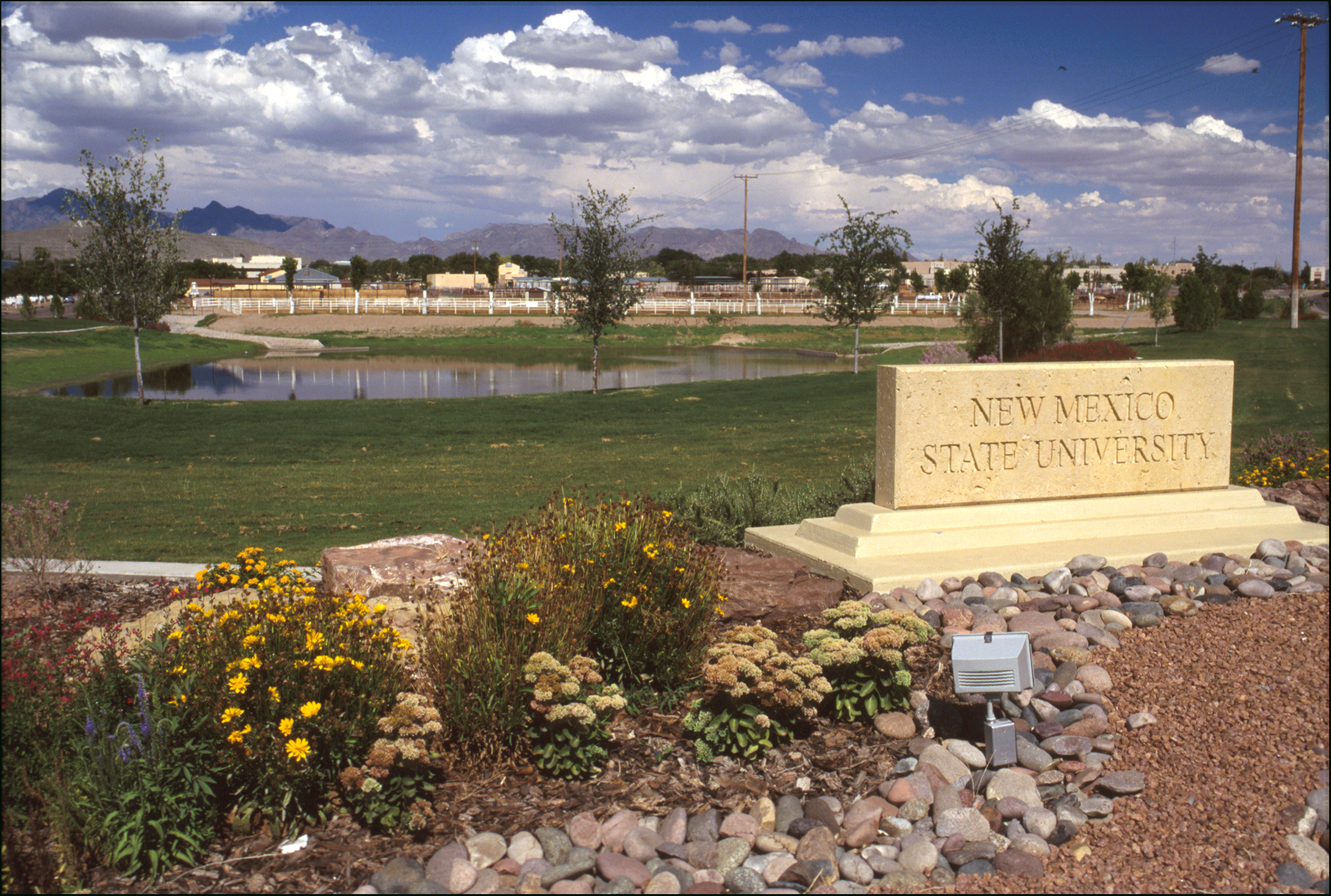 Picture of NMSU Las Cruces